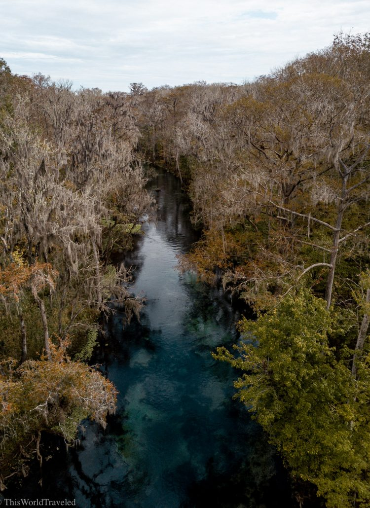 View from above of the Ichetucknee River. The blue water is surrounded by orange, yellow and green trees.