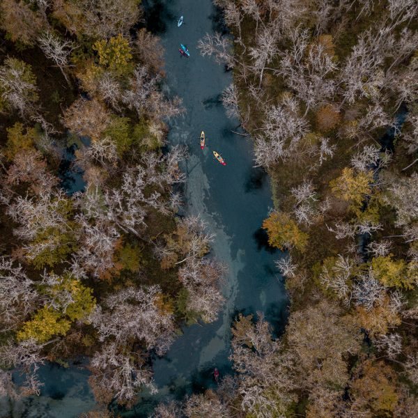 Florida Springs: Ichetucknee Springs and Gilchrist Blue Springs